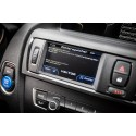 Vektor Datendisplay BMW F2x 1er 2er - LITE